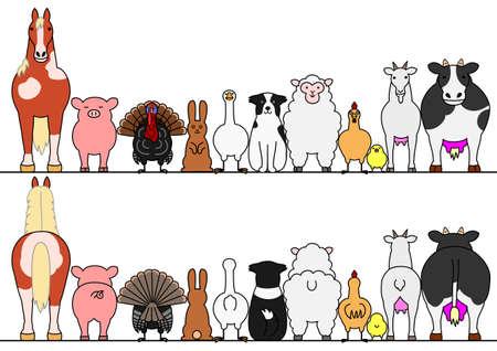 landbouwhuisdieren in een rij, voor en achter