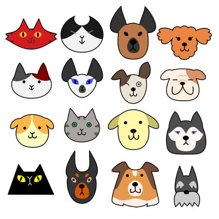 collie: Face set of dogs and cats