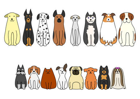 large group of animals: sitting dogs