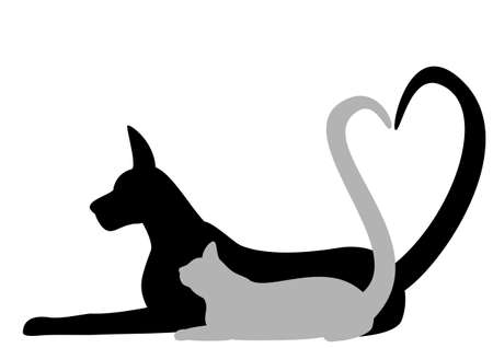grey cat: Dog and cat making Heart with tail