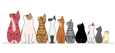 cat illustration: cats in a row, looking away