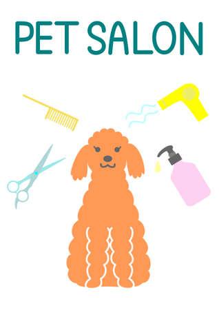 combing: pet salon