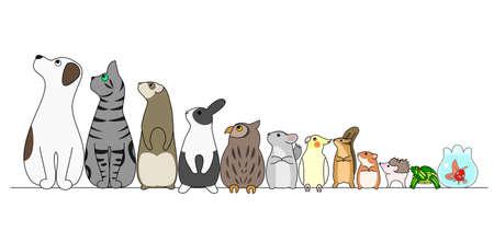 looking away: various pets in a row, looking away