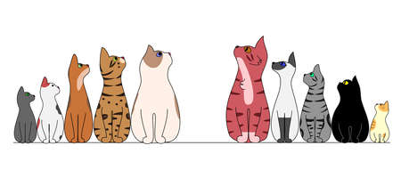looking away: cats in a row, looking center Illustration