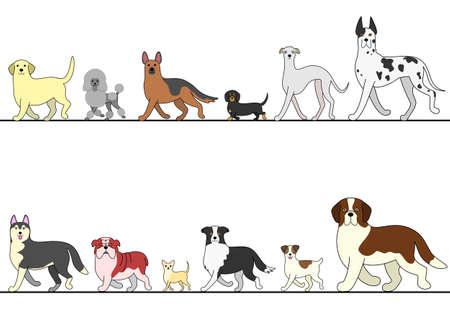 set of various dogs walking in line Illustration