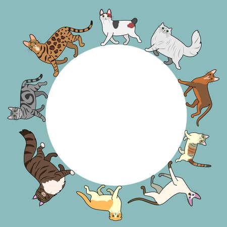 복사 공간 고양이 원 프레임