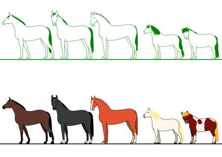 shetlander: paarden staan in de rij Stock Illustratie