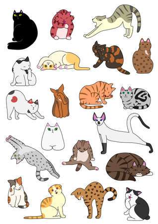 cats posture set Ilustrace