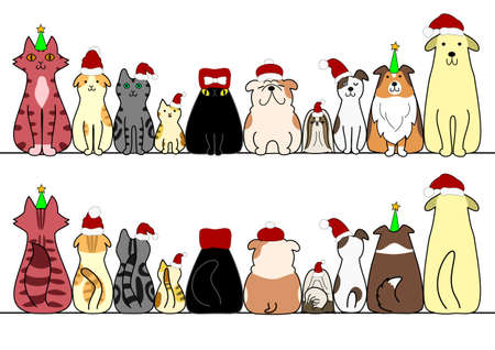 labrador christmas: dogs and cats in a row with copy space, front and back