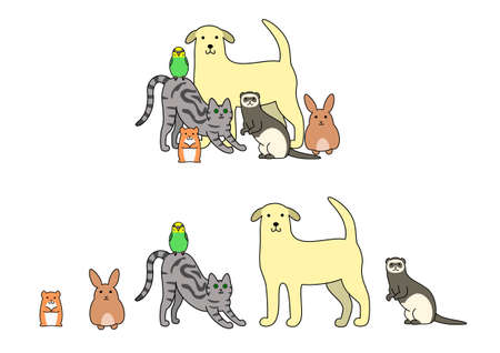 rows: Set of pets illustration, in a row and a group Illustration