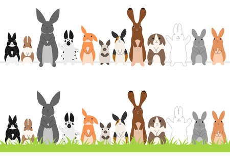 the whole body: set of standing rabbits in a row
