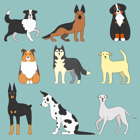 animal border: various dogs