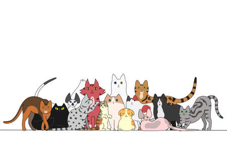 sideways: Group of cats