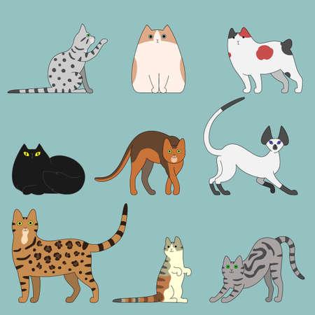 varios gatos