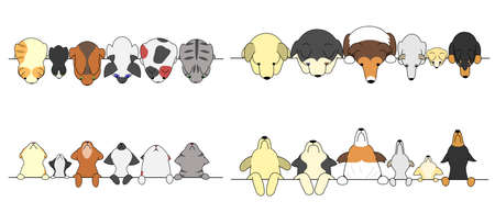 animal border: set of dogs and cats looking up and down Illustration