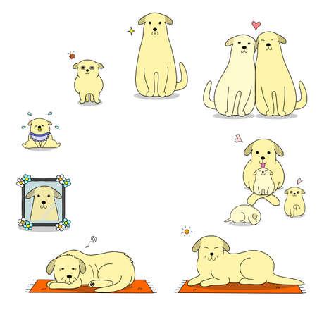dog's life cycle