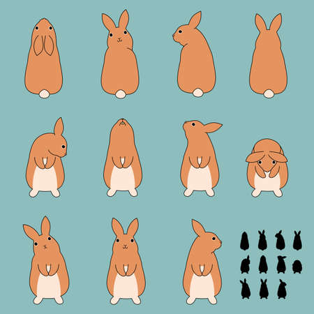 the whole body: Set of rabbit standing poses