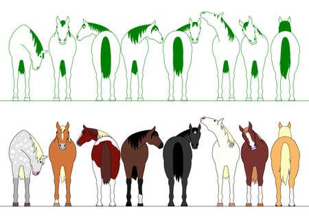 行のカラフルな馬