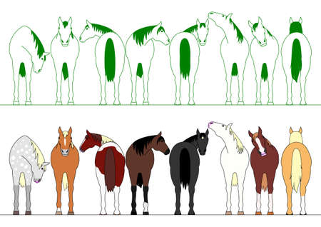 front: colorful horses in a row Illustration