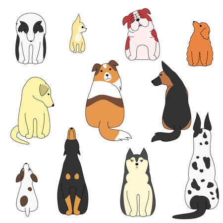 great dane: various posing dogs set