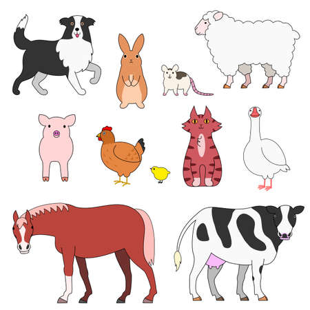border collie: farm animals set