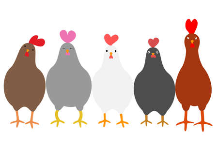 cute: Cute roosters Illustration