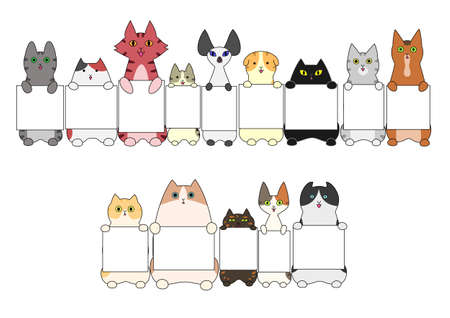 Cats standing with the card
