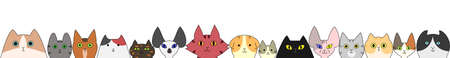 abyssinian: cats banner