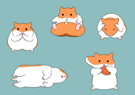 hamster: five poses of hamster