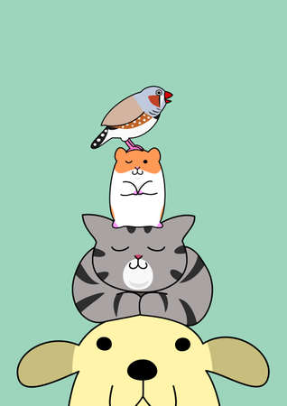 pile: Pets pile on the head