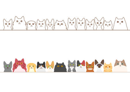 cats border set