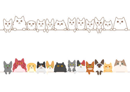 abyssinian: cats border set