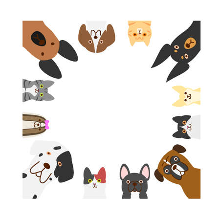 dogs and cats square frame