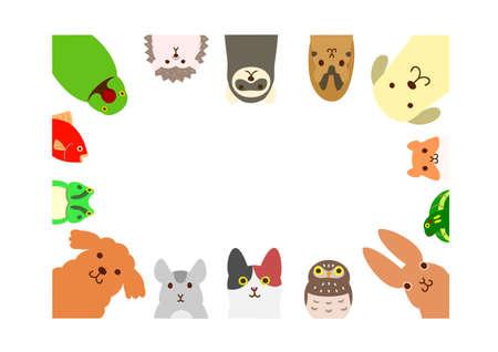rectangle: pets animals rectangle frame