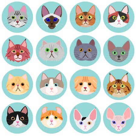 twarz kota zestaw z kręgu Ilustracje wektorowe