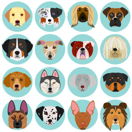dog faces set with circle