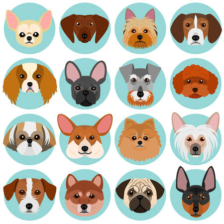 small dog faces set with circle Vectores