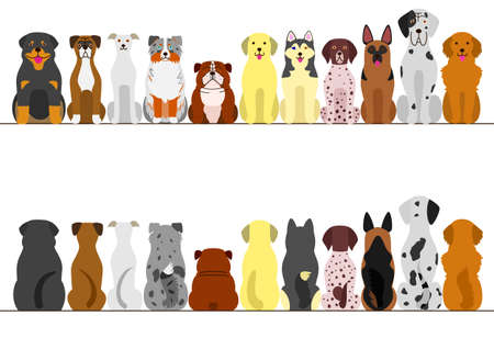 large dogs border set, front view and back view