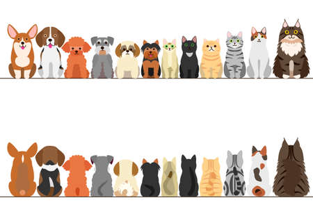 hilera: gatos y perros conjunto fronterizo pequeño, vista frontal y vista posterior Vectores