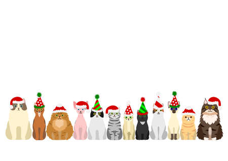 abyssinian: cats border set with christmas party hat