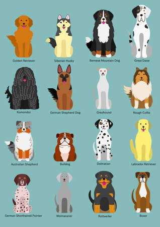 dog breed