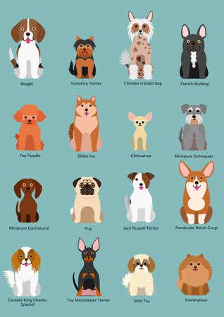 collection de race petit chien Vecteurs