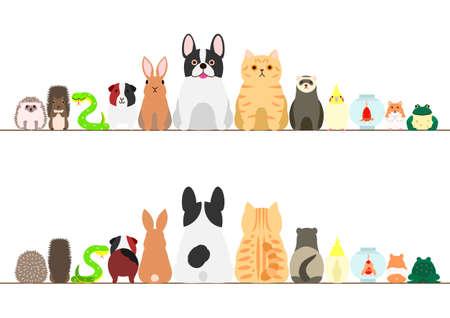los animales de compañía conjunto frontera, vista frontal y vista posterior