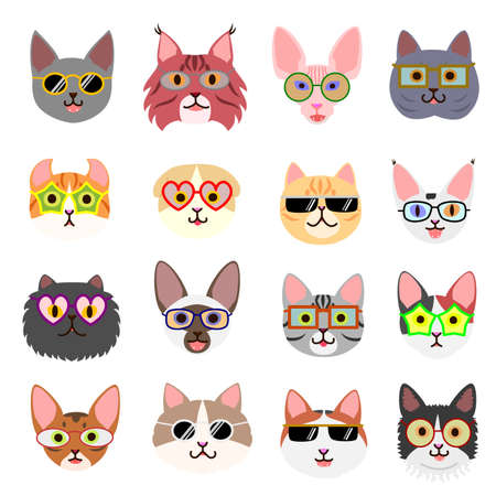 cute kiten faces with glasses Illustration