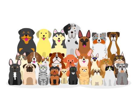 Grupo de perros y gatos Foto de archivo - 71244046