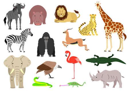 アフリカの動物要素が背景白に設定