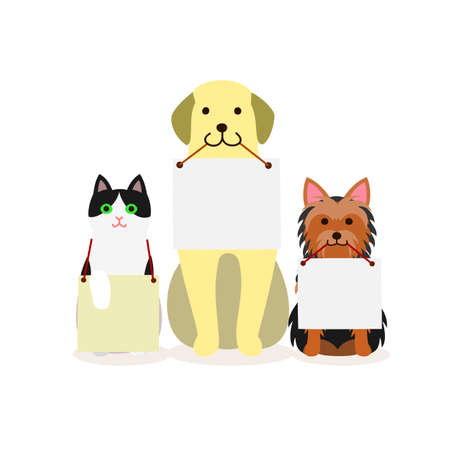 Small group of dogs and cat with message board