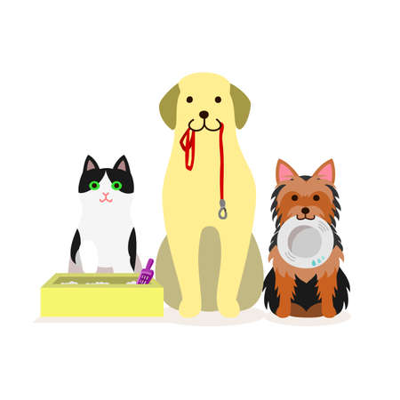 Small group of dogs and cat who needs services Ilustração