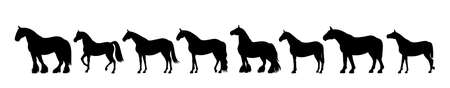 shire horse: Horse silhouette banner Illustration