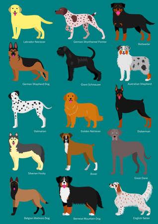 dog breeds set with breeds names